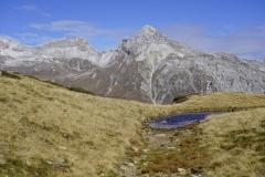 Berg1